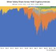 Bitcoin's Share of PoW Mining Rewards Now Above 80%